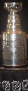 cropped stanley cup