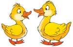 Clipart Illustration of Two Yellow Geese Talking And Facing Each